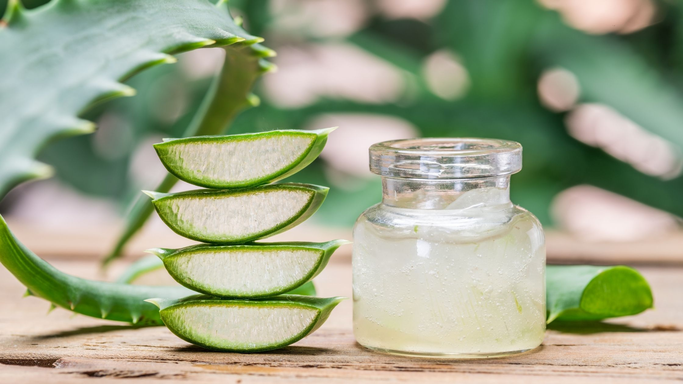 Aloe vera Remedies to Reduce Vaginal Dryness
